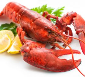 Top 3 Reasons to Consider Seafood Catering in Charleston, SC